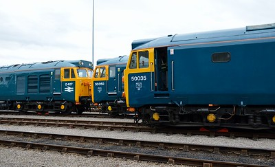 50 007 (D407), 50 050 and 50 035 St Phillips Marsh Depot Bristol 2 May 2016